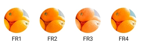 foodie-filter-04