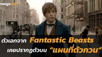 ตัวเอกจาก Fantastic Beasts เคยปรากฏตัวบน