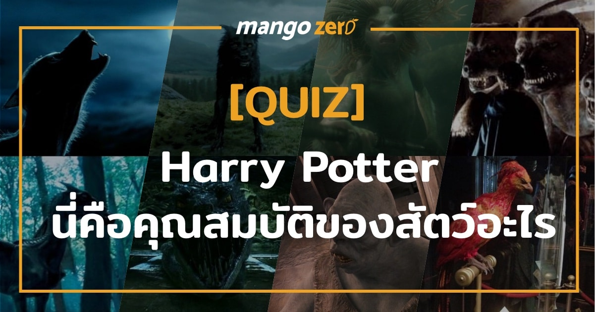quiz-harry-potter-beast