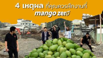 4 เหตุผลที่คุณควรมาฝึกงานที่ Mango Zero