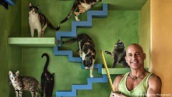 รู้จักกับชายผู้ใช้เวลากว่า 20 ปี สร้างบ้านสุดเจ๋งให้แมวจรจัดกว่า 22 ตัวที่รับมาเลี้ยง