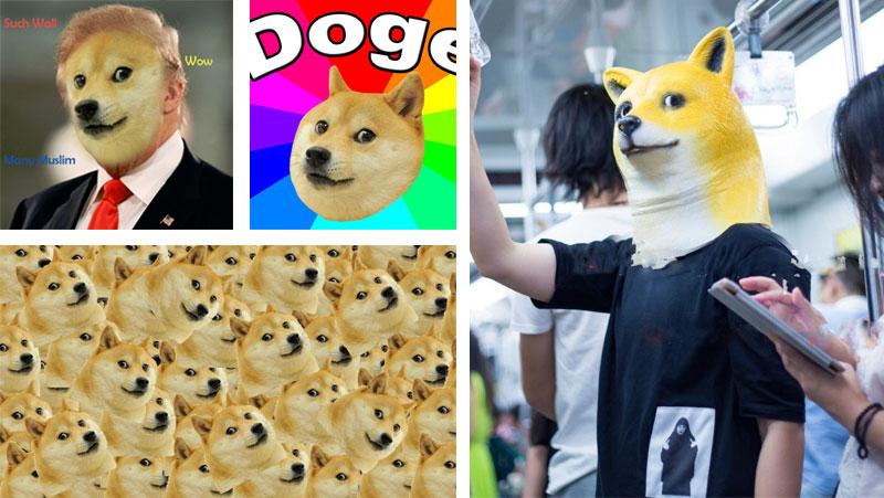 doge-meme