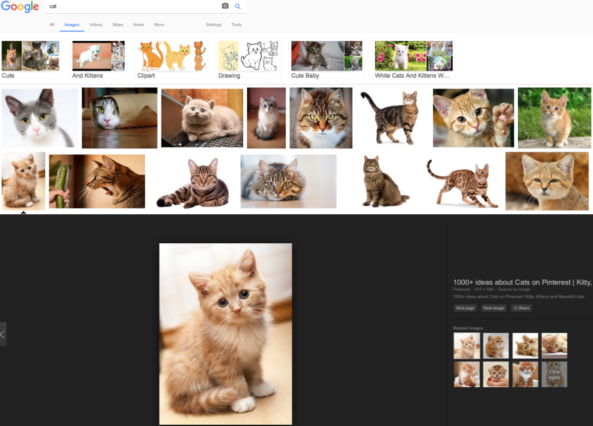 How-to-pictures-copyrighted-search-4