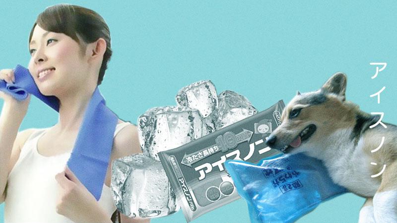 japanese-summer-ice