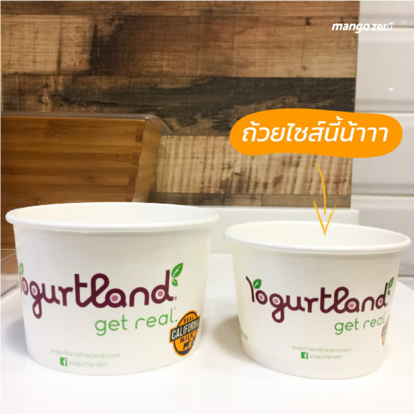 review-yogurtland-promotion-summer-unlimited-09