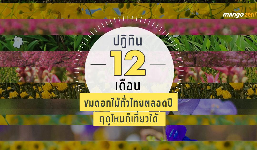 ปฏิทิน 12 เดือน ชมดอกไม้ทั่วไทยตลอดปี ฤดูไหนก็เที่ยวได้