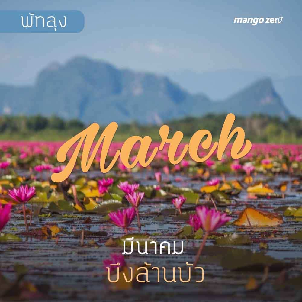 12-places-flowers-travel-all-year-in-thailand3