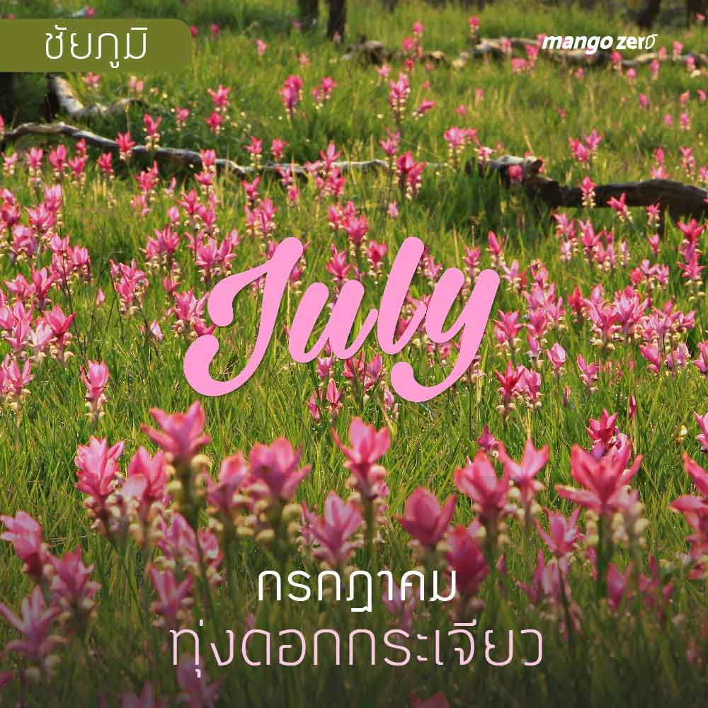 12-places-flowers-travel-all-year-in-thailand7