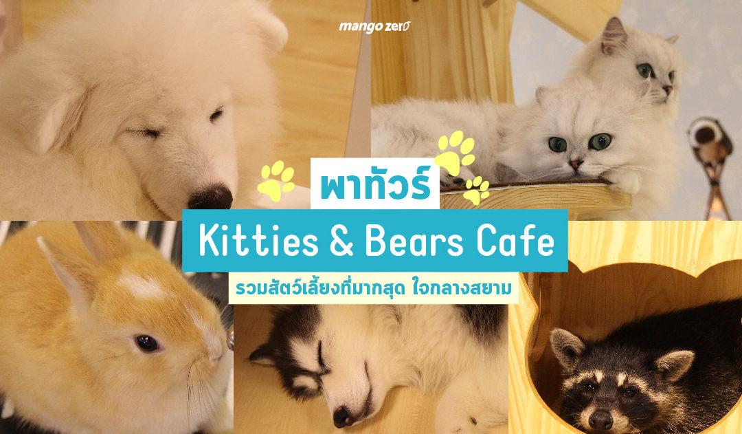 พาทัวร์ร้าน Kitties & Bears Cafe รวมสัตว์เลี้ยงที่มากสุด ใจกลางสยาม