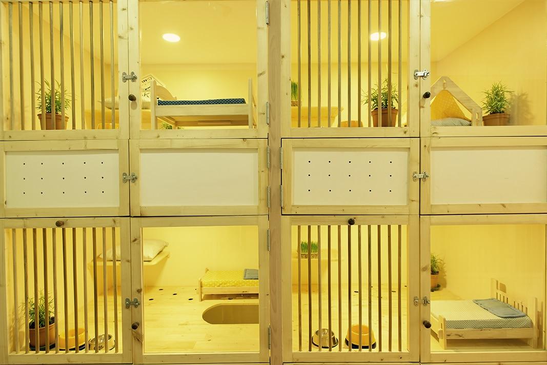 review-Kofuku-Cat-Hotel -10