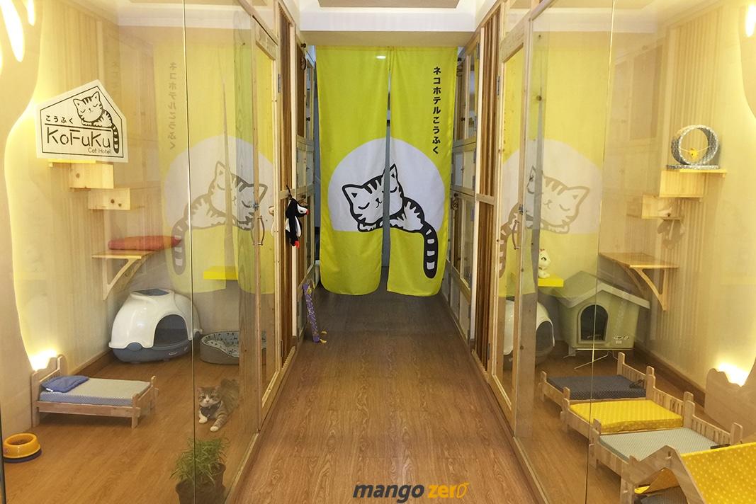 review-Kofuku-Cat-Hotel -17