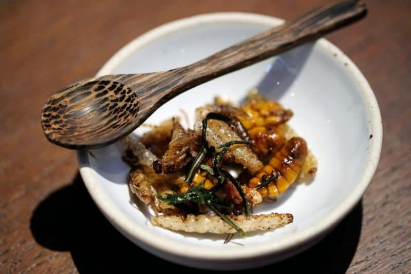 review-insect-in-the-backyard-at-changchui-10