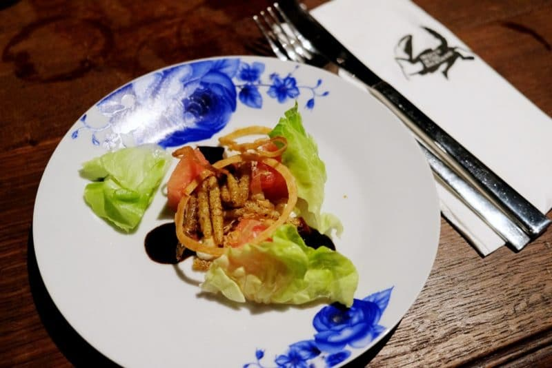 review-insect-in-the-backyard-at-changchui-13