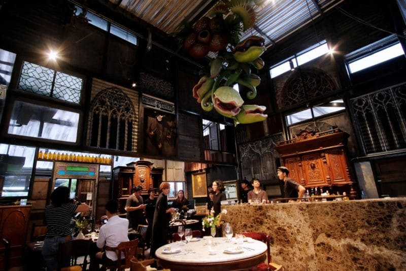 review-insect-in-the-backyard-at-changchui-3