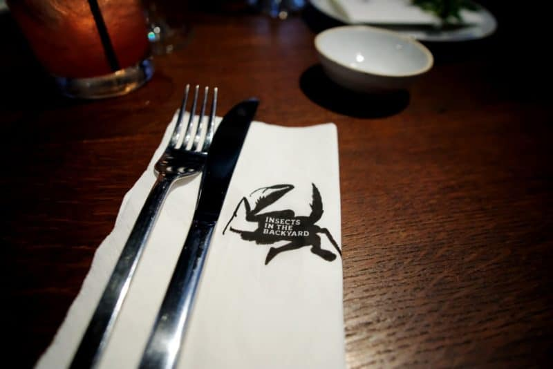 review-insect-in-the-backyard-at-changchui-8