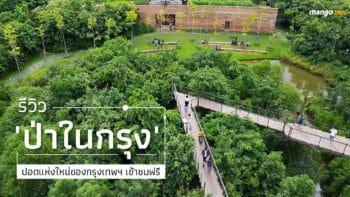 รีวิว 'ป่าในกรุง' ปอดแห่งใหม่ของกรุงเทพฯ เข้าชมฟรี