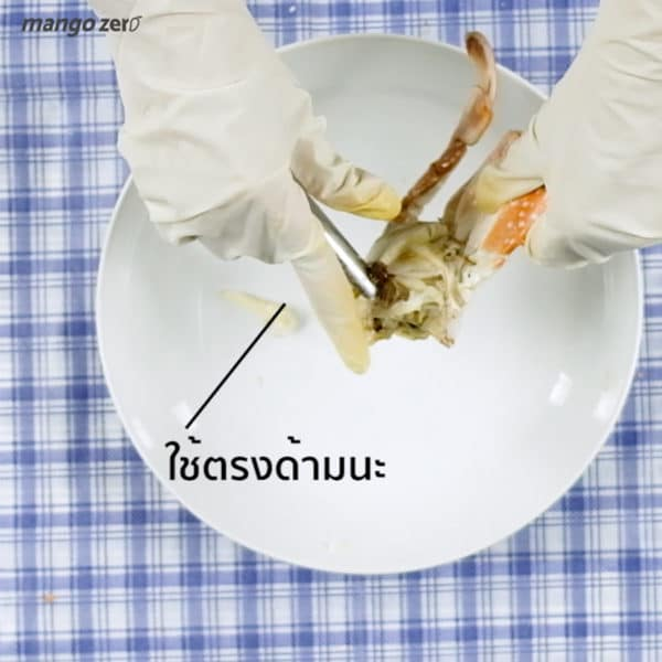how-to-eat-shrimp-and-crab-3