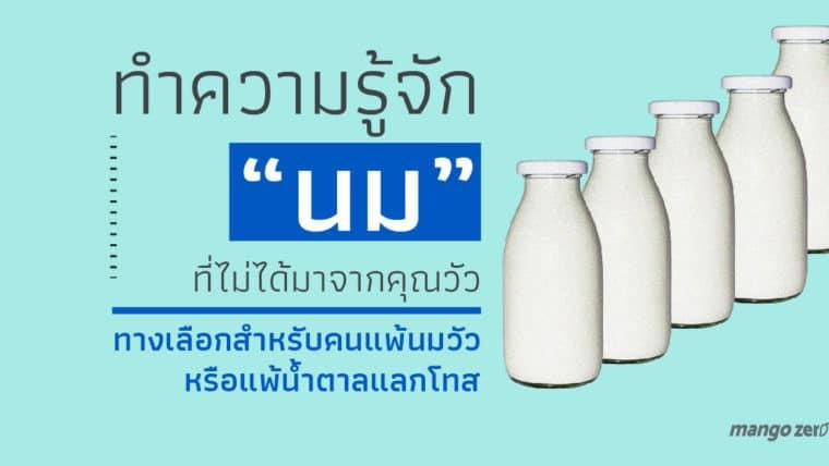 ทำความรู้จัก นม 5 ชนิด ที่ไม่ได้มาจากคุณวัว