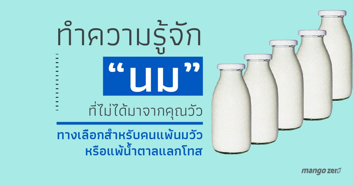 type-of-milk-that-not-from-cow-14