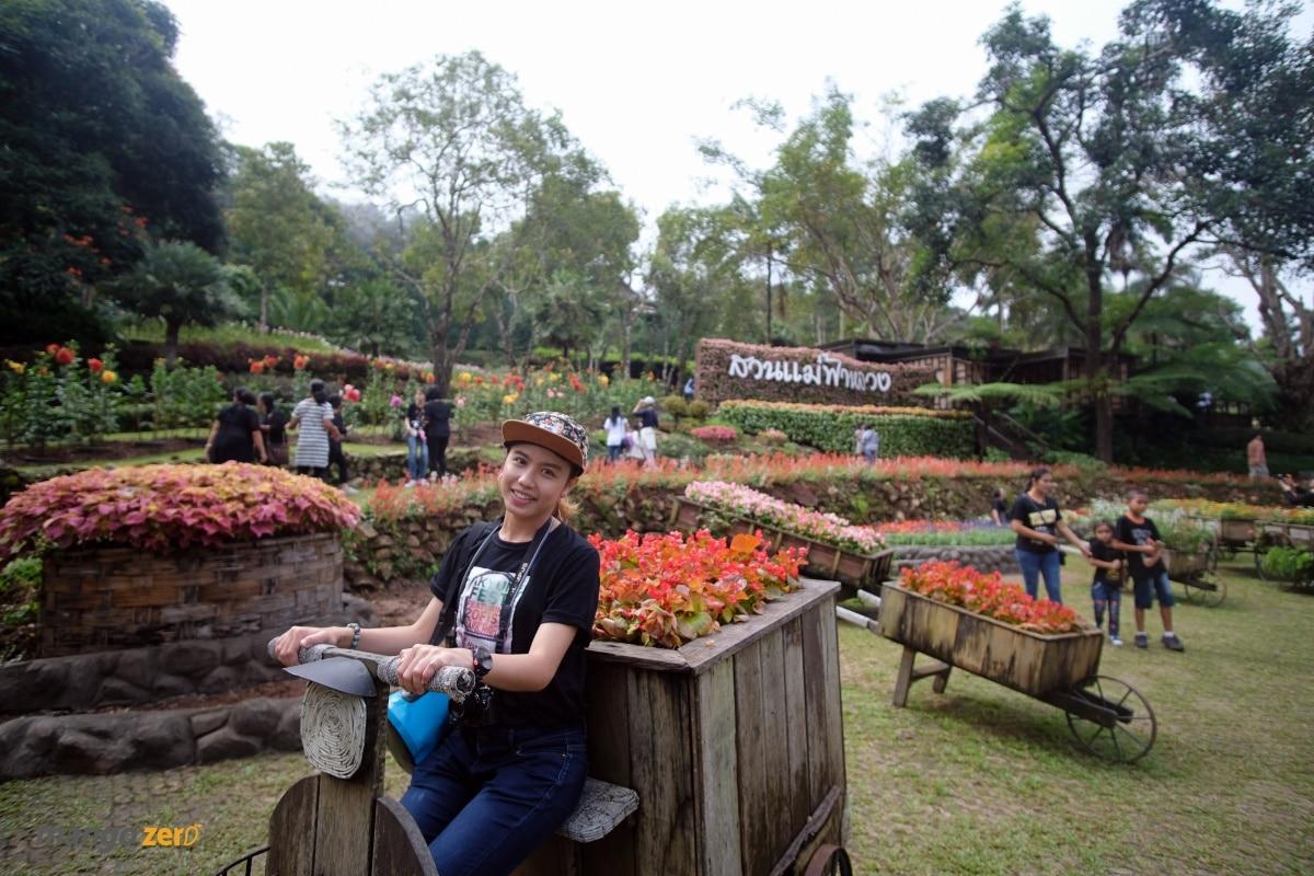 doitung-tree-top-walk-at-chiang-rai-12