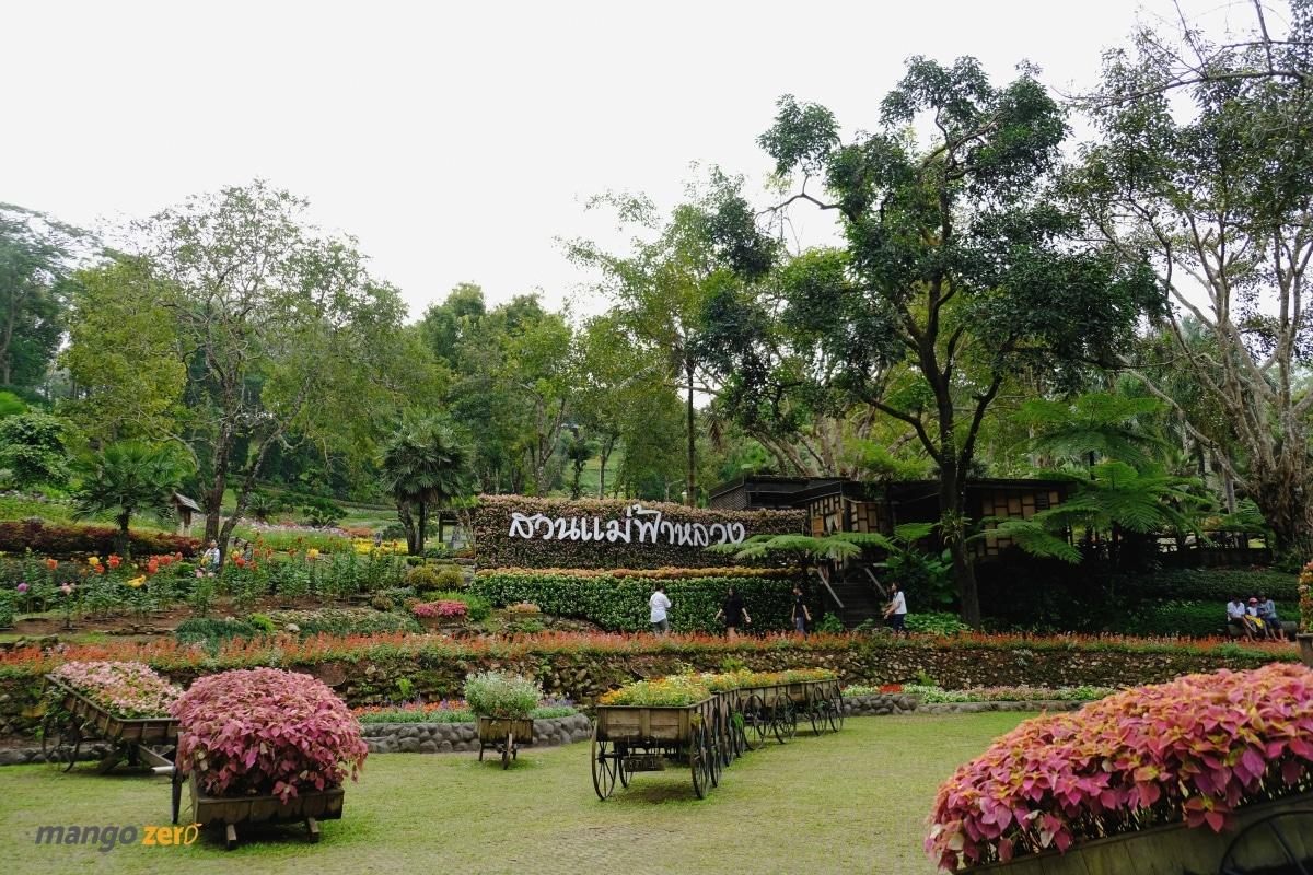 doitung-tree-top-walk-at-chiang-rai-14