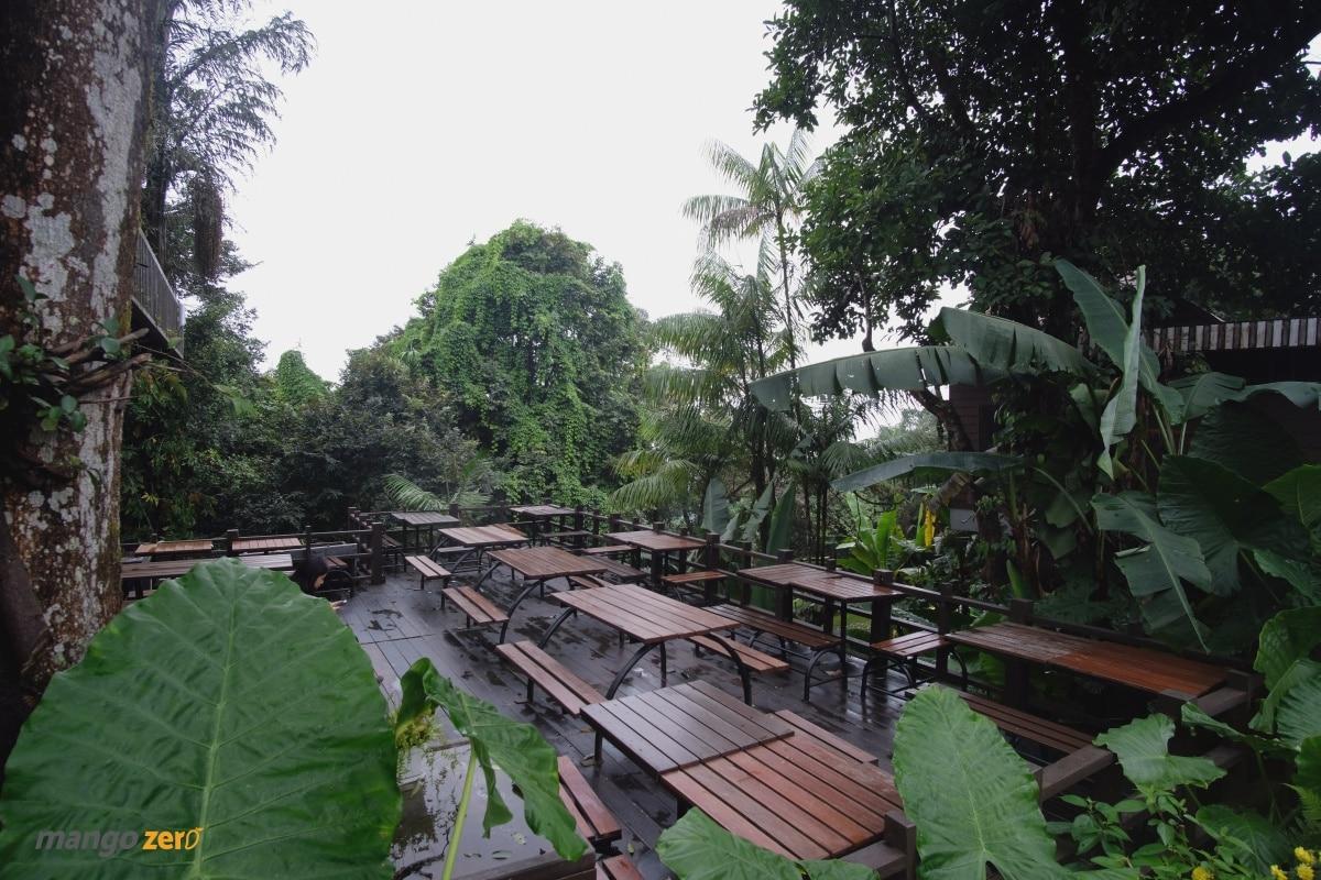 doitung-tree-top-walk-at-chiang-rai-2