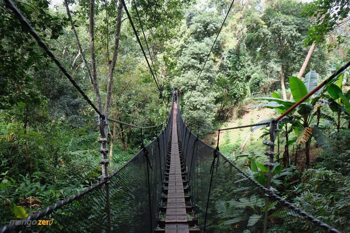 doitung-tree-top-walk-at-chiang-rai-24