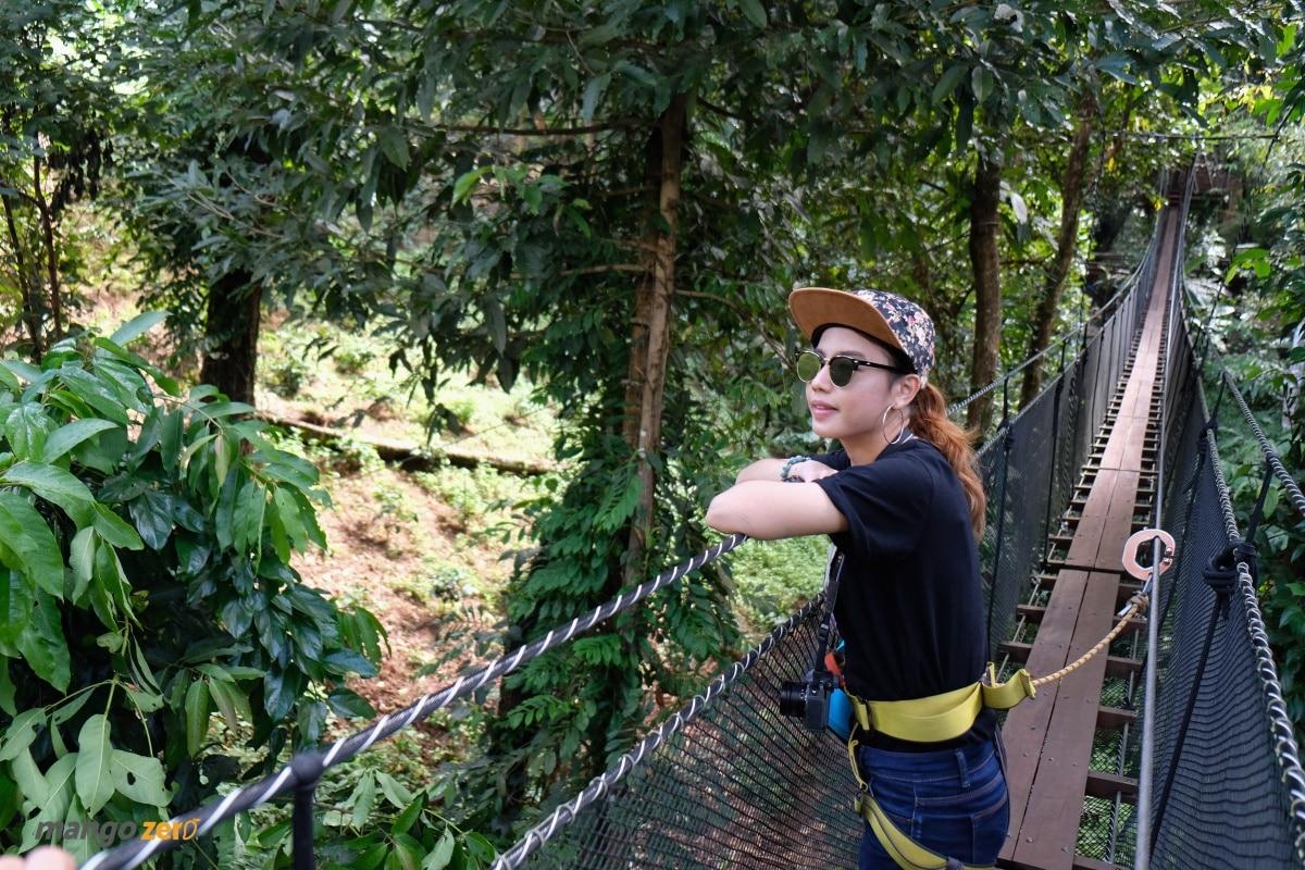 doitung-tree-top-walk-at-chiang-rai-27
