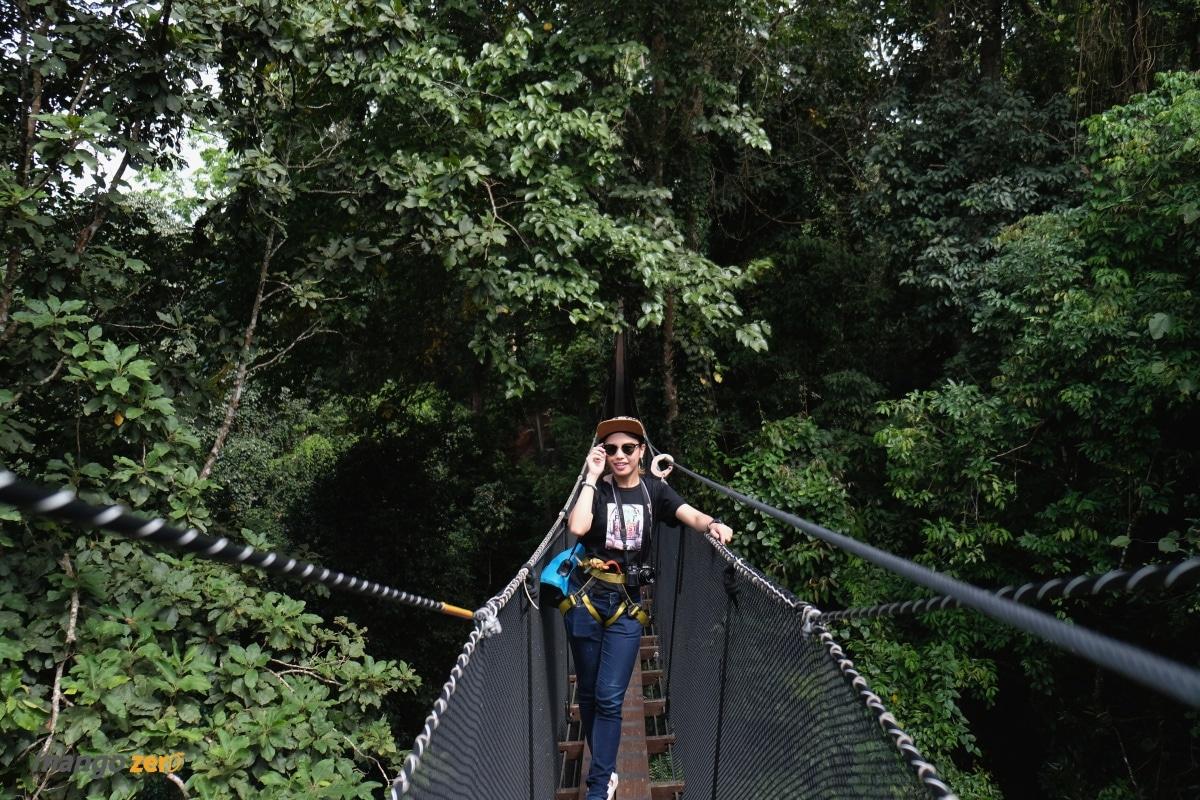 doitung-tree-top-walk-at-chiang-rai-32
