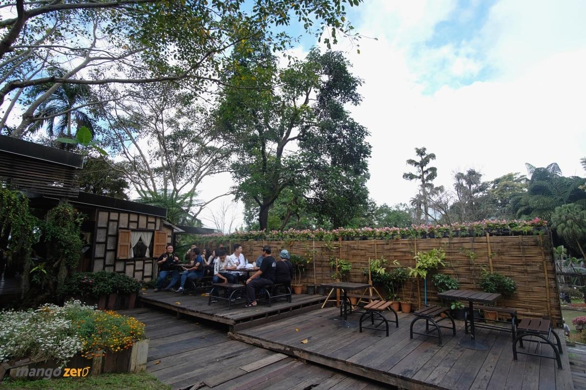doitung-tree-top-walk-at-chiang-rai-35