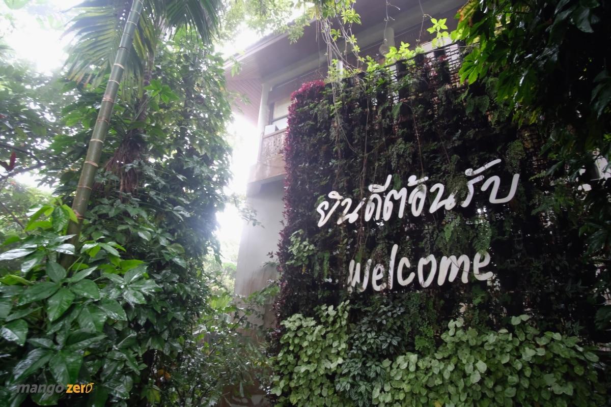 doitung-tree-top-walk-at-chiang-rai-5