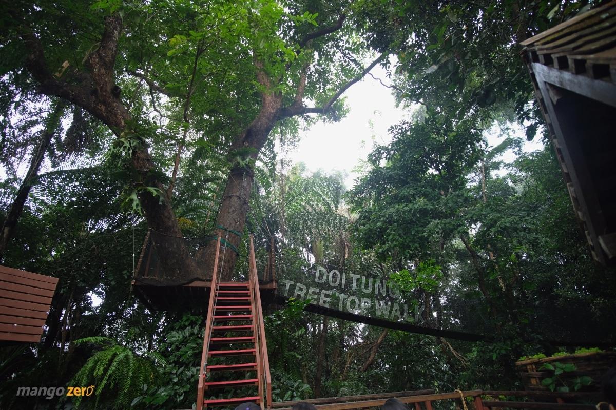doitung-tree-top-walk-at-chiang-rai-8