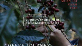 เส้นทางของเมล็ดกาแฟ:จากเครื่องดื่มหอมกรุ่นรสขม สู่ปลายทางความสุขมอบให้ชุมชน