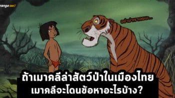 ถ้าเมาคลีล่าสัตว์ป่าในเมืองไทย เมาคลีจะโดนข้อหาอะไรบ้าง?