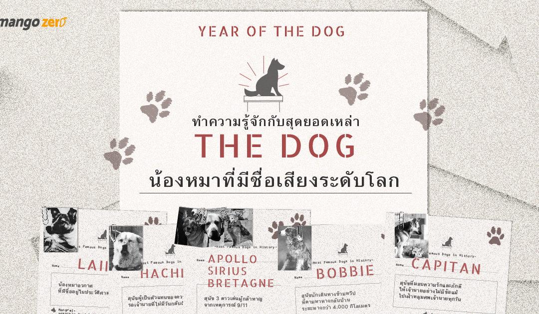 Year of the Dog ทำความรู้จักเหล่า The Dog น้องหมาที่มีชื่อเสียงระดับโลก
