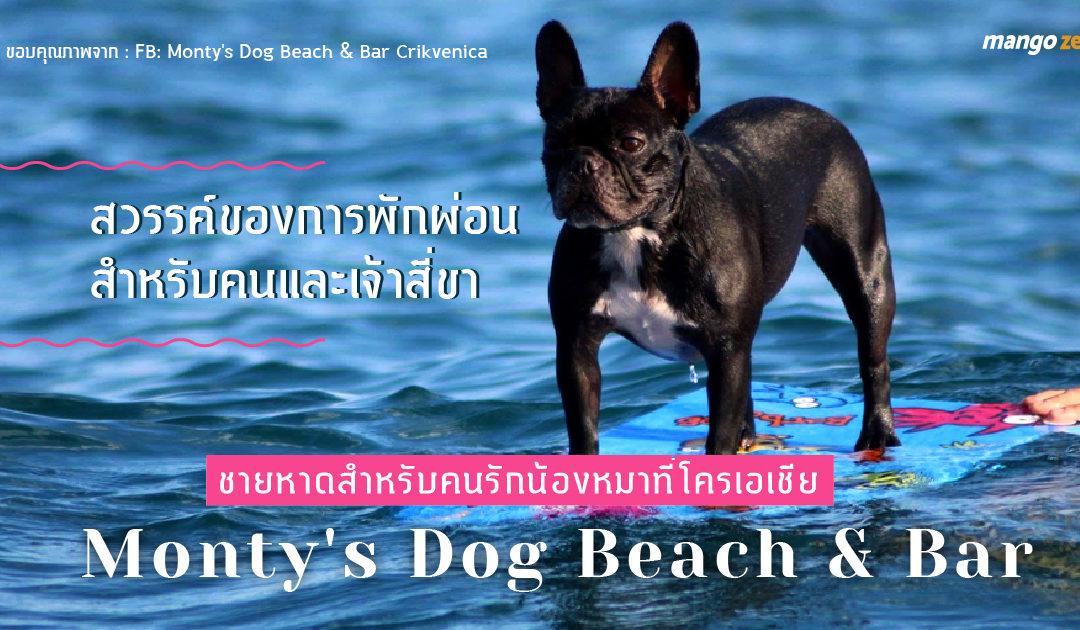 ชายหาดสำหรับคนรักน้องหมาที่โครเอเชีย : Monty's Dog Beach & Bar สวรรค์ของการพักผ่อนสำหรับคนและเจ้าสี่ขา