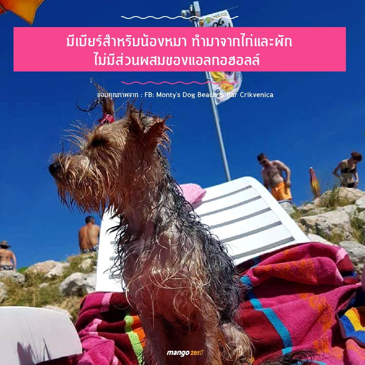 montys-dog-beach-bar-06