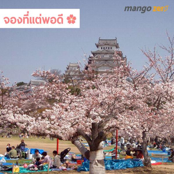 sakura-manner-2