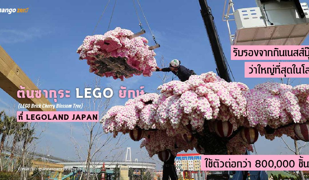 ต้นซากุระ LEGO ยักษ์ ที่ LEGOLAND JAPAN : รับรองจากกินเนสส์บุ๊คว่าใหญ่ที่สุดในโลก ใช้ตัวต่อกว่า 800,000 ชิ้น!!