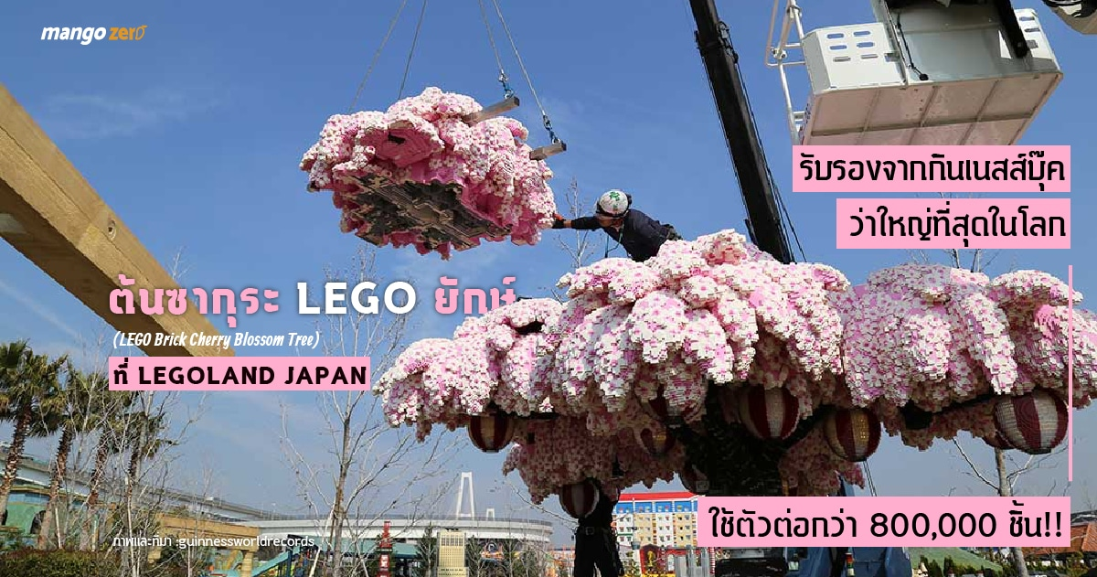 world-biggest-lego-cherry-blossom-tree-06