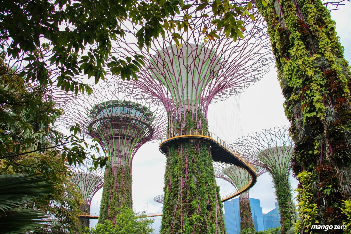 batch_5-places-must-to-go-in-singapore-14