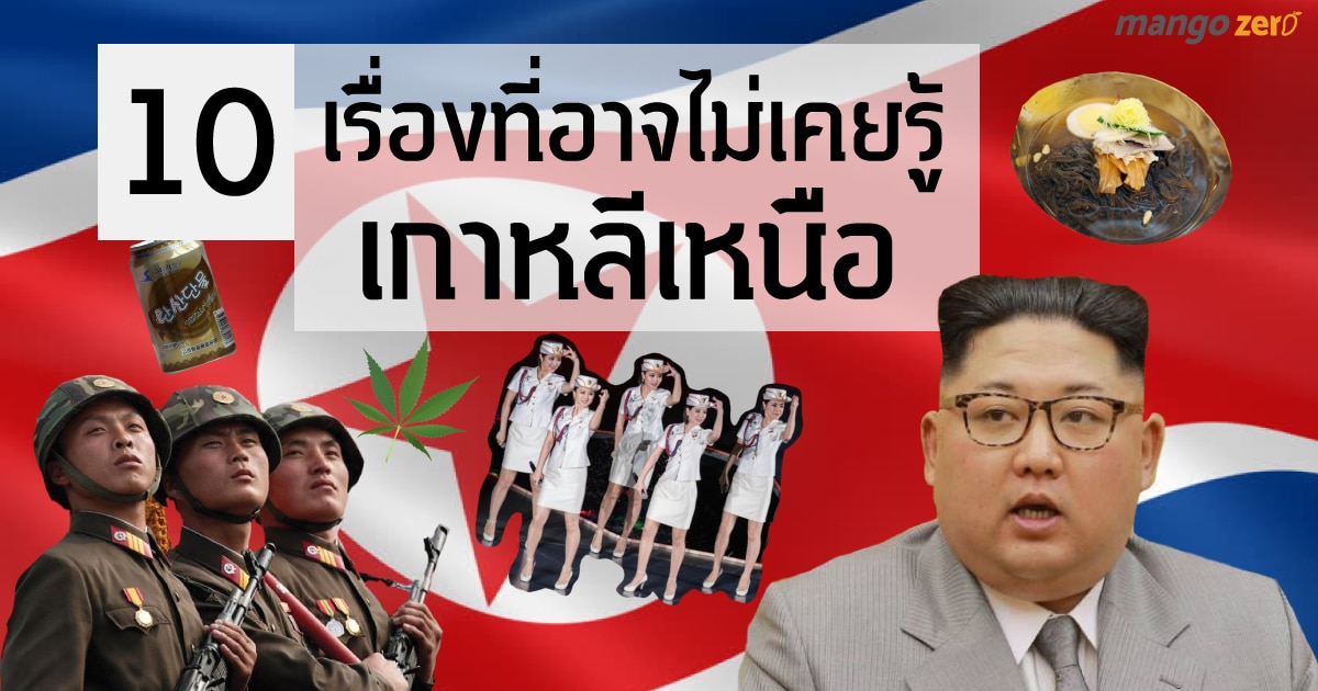 cover-NK-web