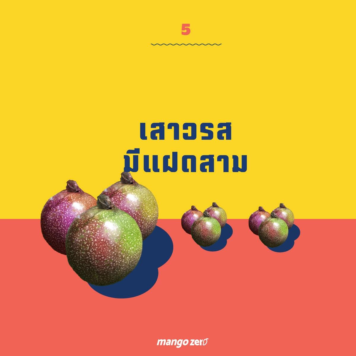 passion fruit-07