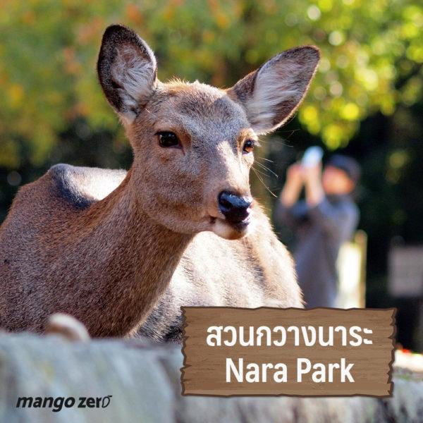 animal-lover-japan-01