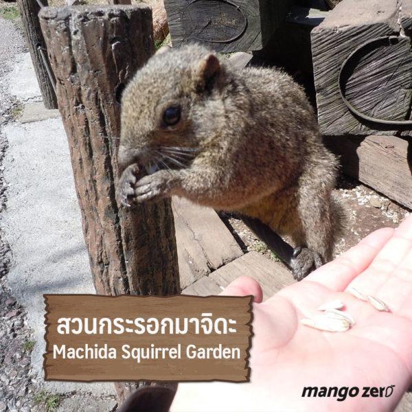animal-lover-japan-05