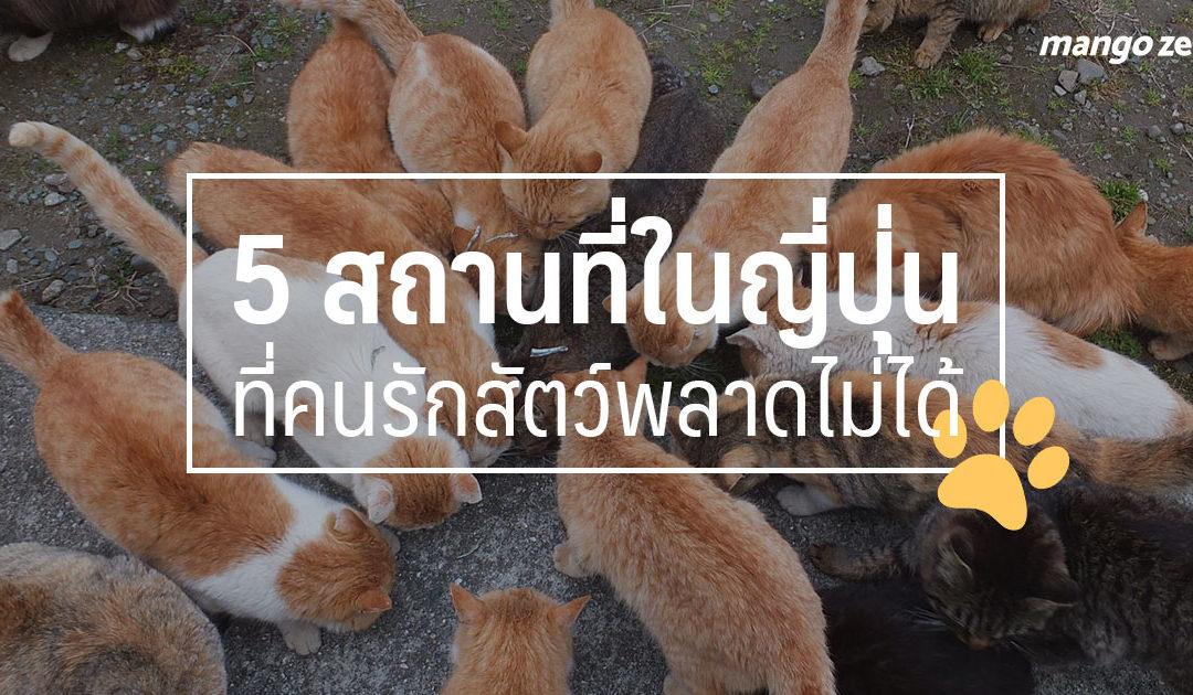5 สถานที่ในญี่ปุ่นที่คนรักสัตว์พลาดไม่ได้