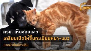 ครม. เห็นชอบแล้ว เตรียมเปิดให้ขึ้นทะเบียนหมา-แมว หากฝ่าฝืนมีค่าปรับ