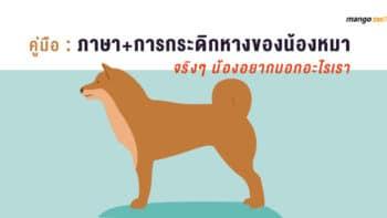 คู่มือ : ภาษา+การกระดิกหางของน้องหมา : จริงๆ น้องอยากบอกอะไรเรา