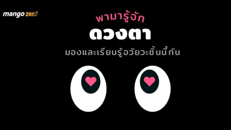 เพราะตาเป็นหน้าต่างของหัวใจ : พามารู้จักดวงตา มองและเรียนรู้อวัยวะชิ้นนี้กัน