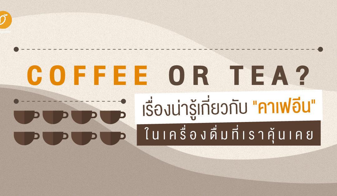 """Coffee or Tea? : เรื่องน่ารู้เกี่ยวกับ """"คาเฟอีน"""" ในเครื่องดื่มที่เราคุ้นเคย"""